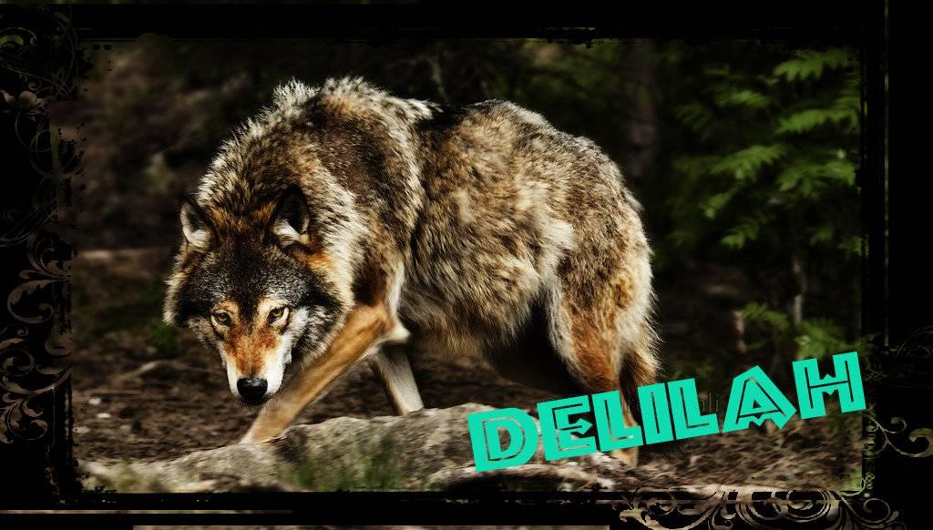 Profile - Omega Delilah Delilah_zpsc65cdffc