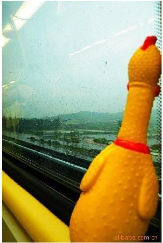 rubber chicken photo: Funny Shrilling Screaming Rubber Chicken 21.jpg