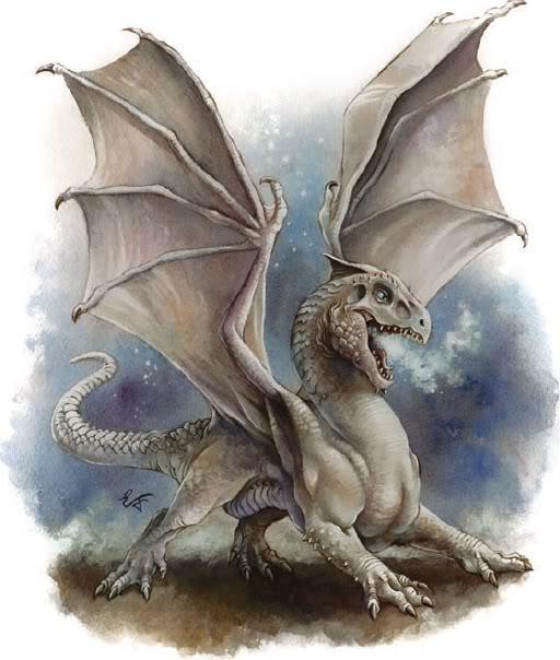 Los Dragones Blancos Dragon-blanco-cria