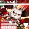 Peter White * Peter-rabbit-icon