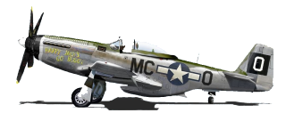 Experience X night lighting P-51
