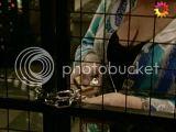Momentos Ro&Ro en capturas - Página 3 Th_1004201014_001