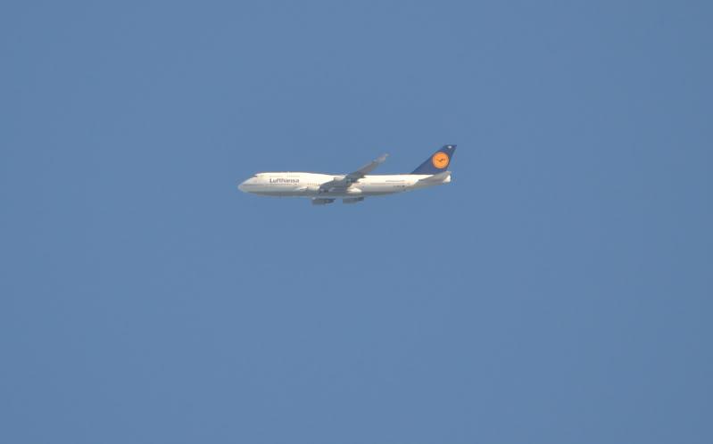 Sobre el cielo de La Plata Aviones12