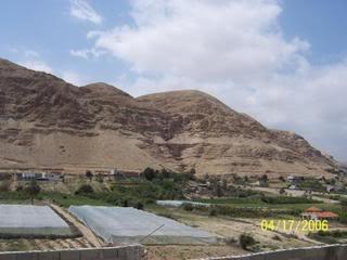 موسوعة صور المدن الفلسطينية Jericho-11353
