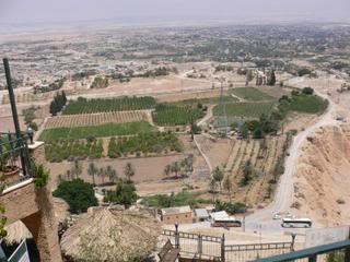 موسوعة صور المدن الفلسطينية Jericho-11559