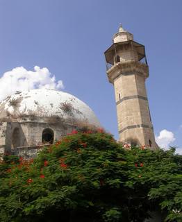 موسوعة صور المدن الفلسطينية Picture13007