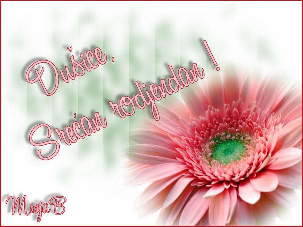 Sreæan roðendan Dusicaf Dusicaf_rodjendanska