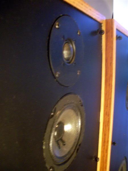 Boston Acoustics A-150's IMGP6230