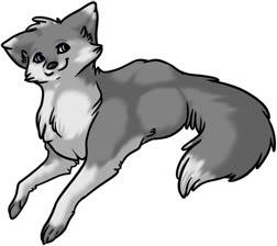 Shyla Wolf