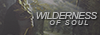 Wilderness of Soul