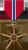 Les médailles Bronzestar-taille2