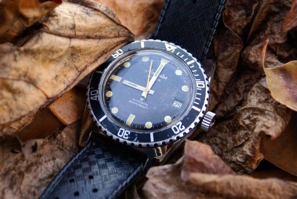 Vos plus belles photos de montres! DSC03444