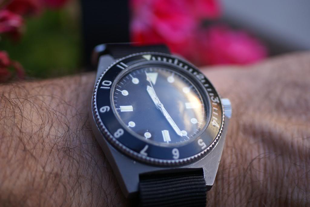 Benrus Type 1 DSC04165