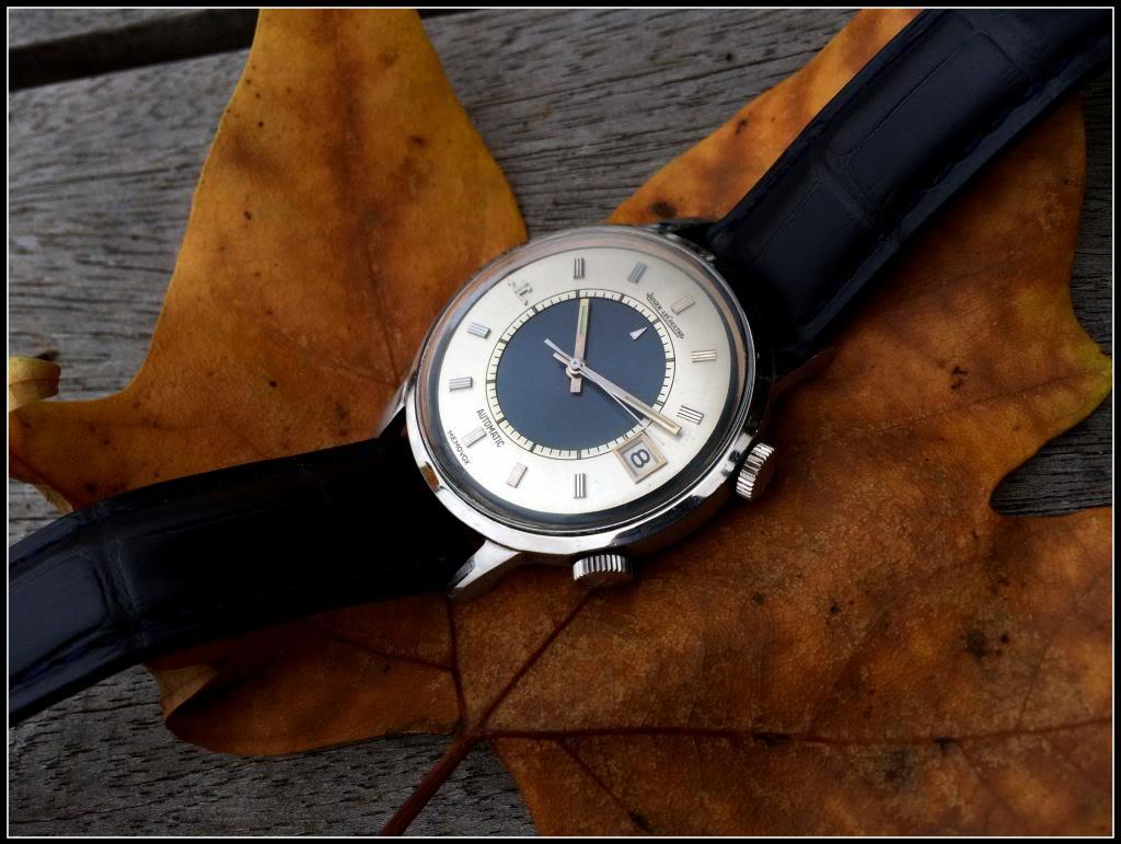 La montre du vendredi 8 novembre 2013 IMG_6635