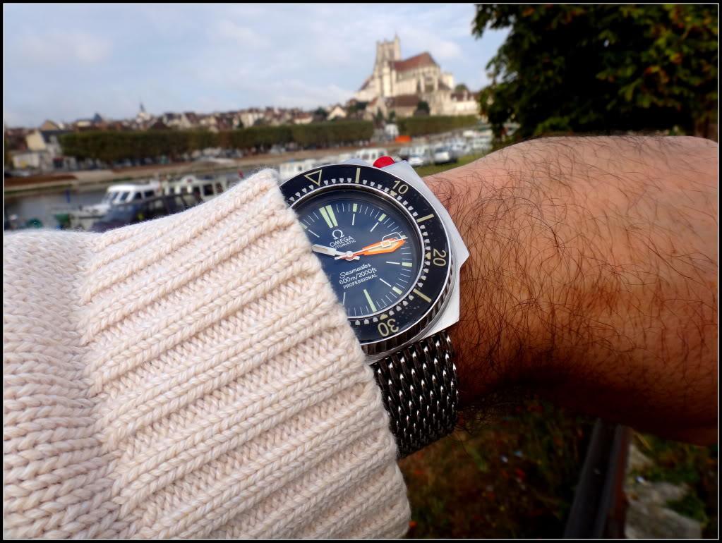 Des montres dans la ville DSC05128_zps9d59b92a