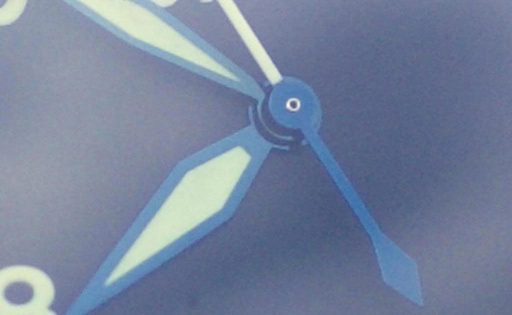 Les aiguilles bleuies DSC04006-2