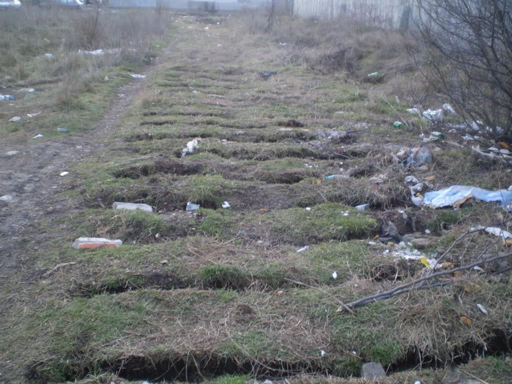 Liniile ferate industriale din Bucuresti P1010593_01
