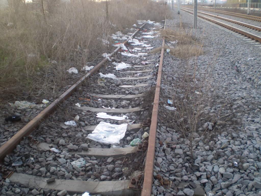 Liniile ferate industriale din Bucuresti P1010600_01