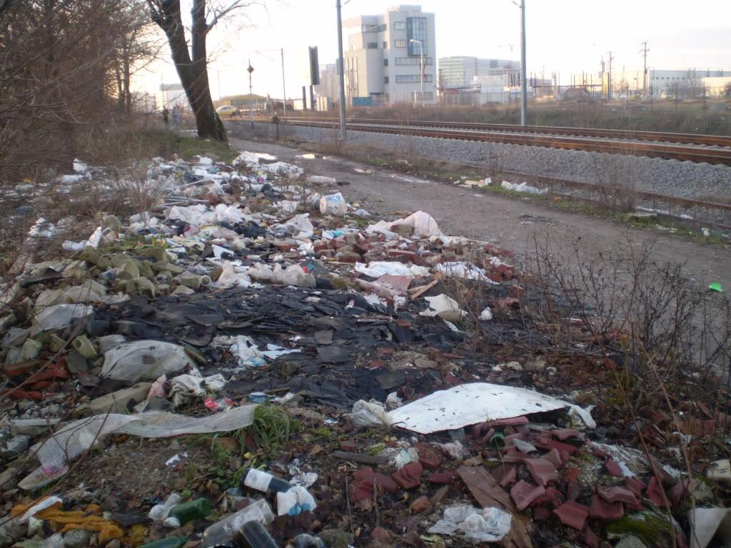 Liniile ferate industriale din Bucuresti P1010604_01