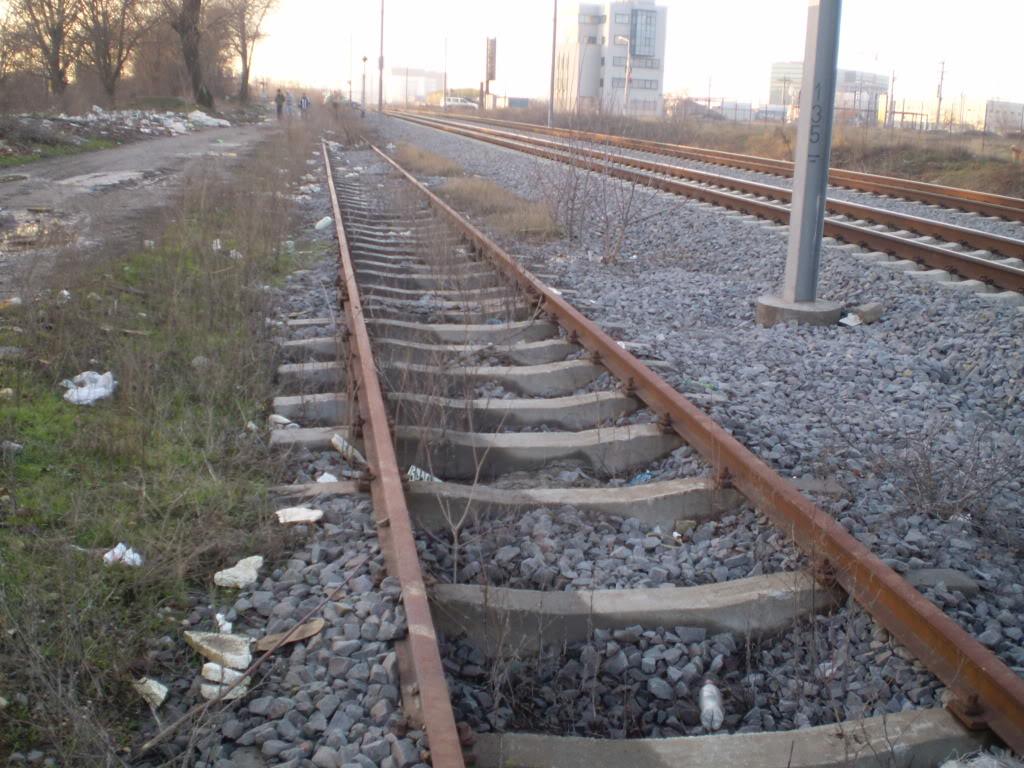 Liniile ferate industriale din Bucuresti P1010605_01