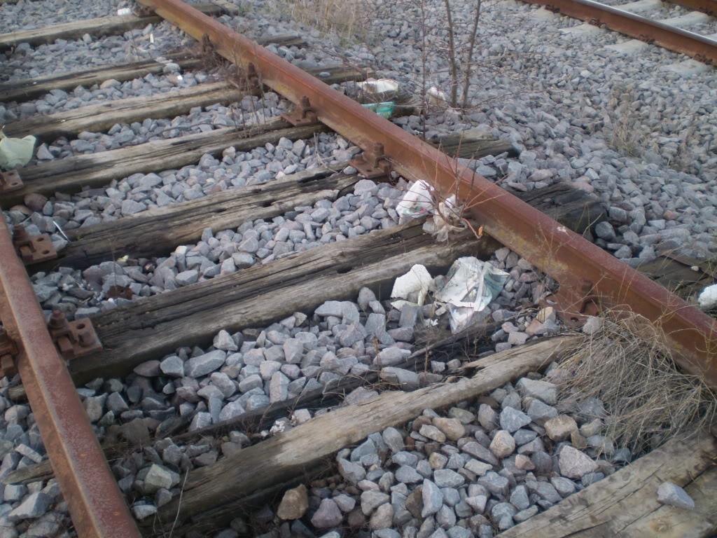Liniile ferate industriale din Bucuresti P1010624_01