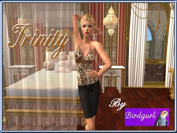 Birdgurl's Sims 2 Creations - Page 8 Trinitybanner1_zps7919d91c