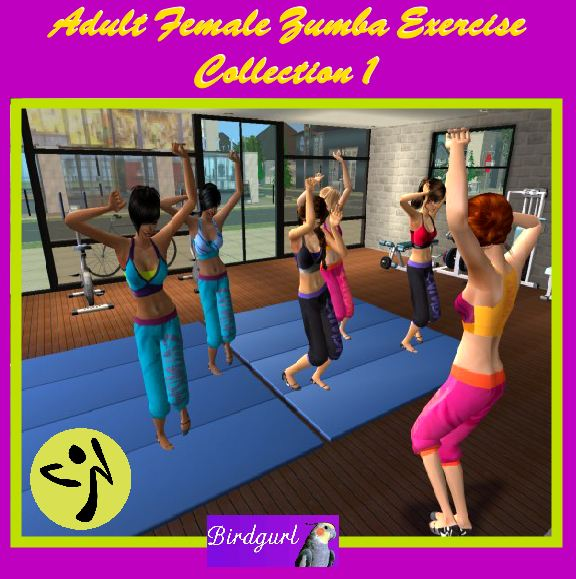 Birdgurl's Sims 2 Creations - Page 5 AdultFemaleZumbaExerciseCollection1banner1