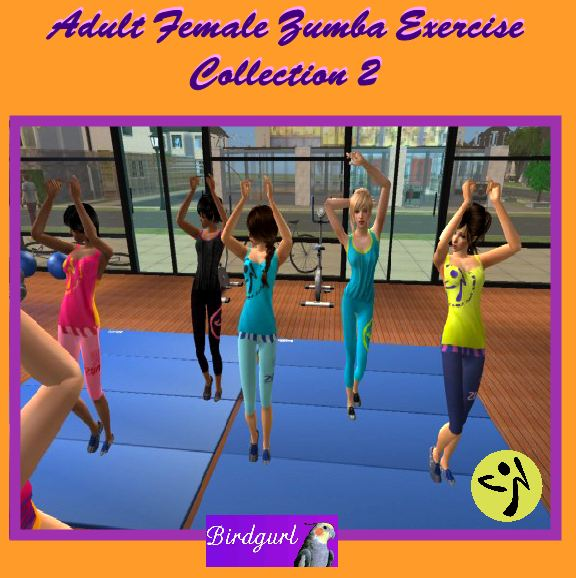 Birdgurl's Sims 2 Creations - Page 5 AdultFemaleZumbaExerciseCollection2banner1