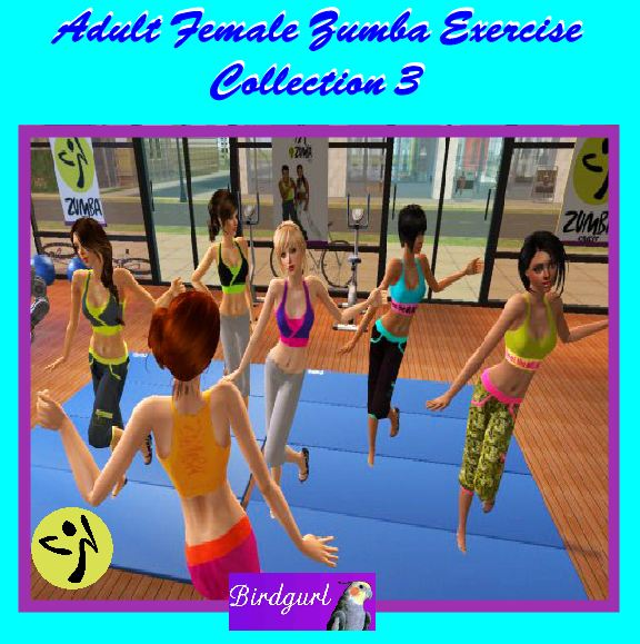 Birdgurl's Sims 2 Creations - Page 5 AdultFemaleZumbaExerciseCollection3banner1