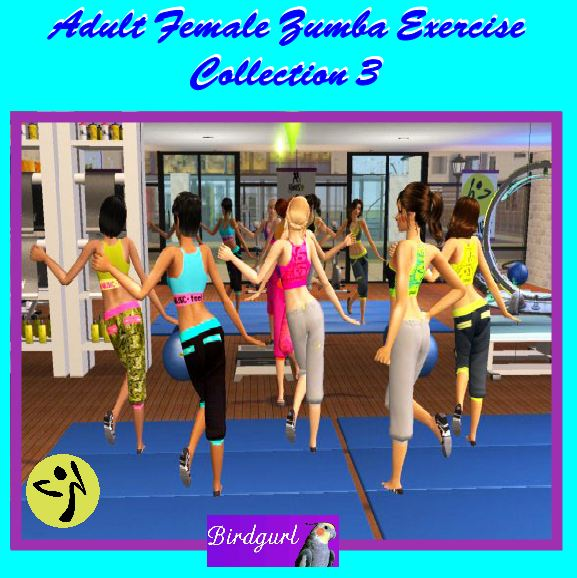 Birdgurl's Sims 2 Creations - Page 5 AdultFemaleZumbaExerciseCollection3banner2