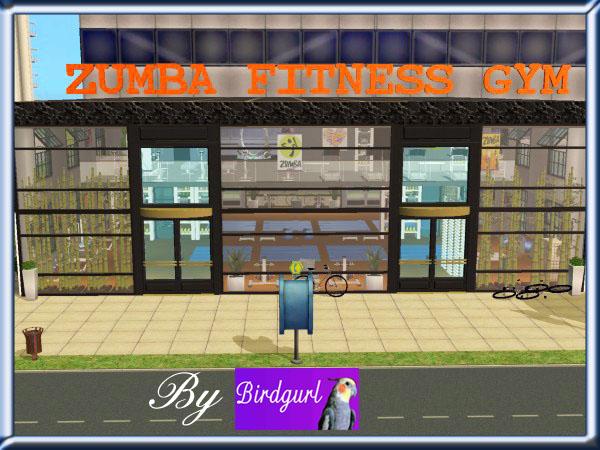 Birdgurl's Sims 2 Creations - Page 5 ZumbaFitnessGymbanner