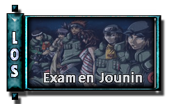 Examen Jounin