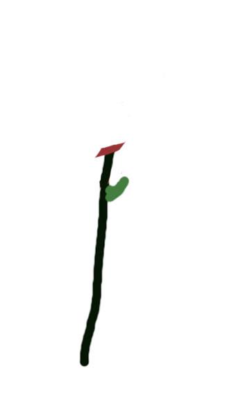 Petit cours sur la taille d'arbuste Tailleau-dessusbourgeon3