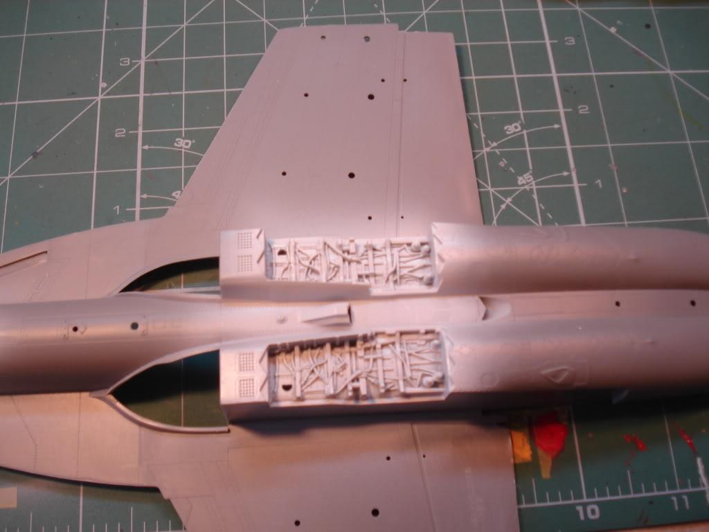 F/18 super hornet DSC08736