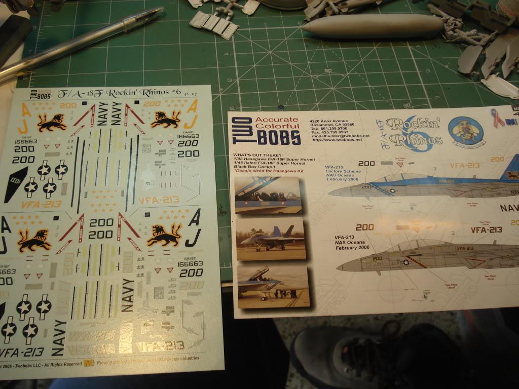 F/18 super hornet DSC08745