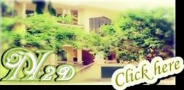 [N2D] Music Club N2dcc