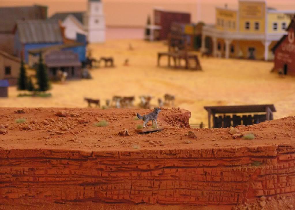 La guerre du bétail  Vrac2011283