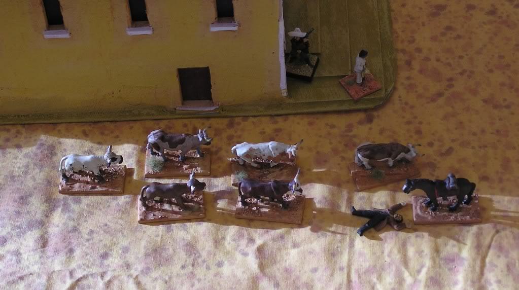 La guerre du bétail  Vrac2011306