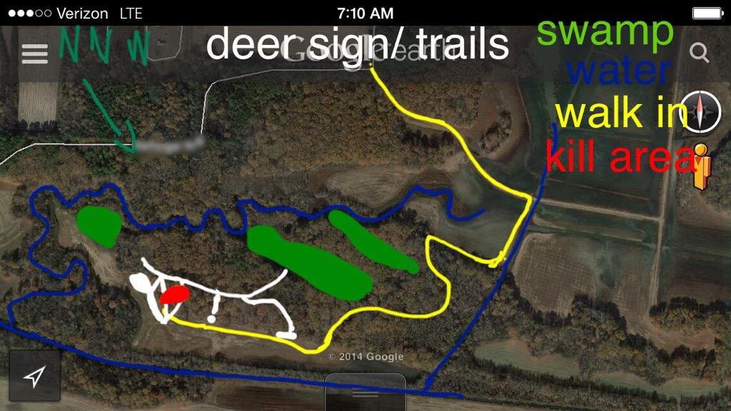 Deer Contest - Page 2 85D6E9CB-2287-4810-877E-ABE190B2F434