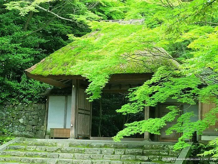 just Japan 5bwallcoo5d_Kyoto_scene_J01_15