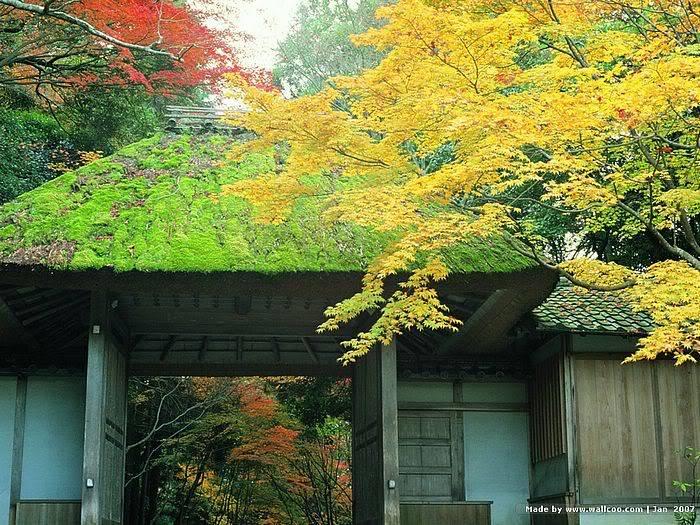 just Japan 5bwallcoo5d_Kyoto_scene_J01_22