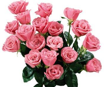 Поздравляем с Днем Рождения Нину (Любу-сик) 9e629c7ce80386096341bf1fee40878b