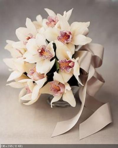 Поздравляем с Днем рождения Елену (maslenitsa) Fa6b14db5760678713ac895d0522a6bc