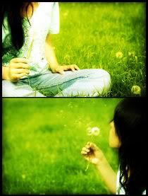 Bồ công anh... - by Amru-chan -  Yahoo 360 Dandelion3