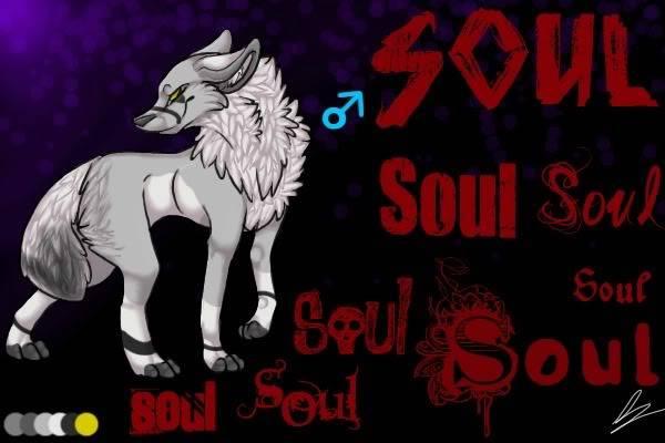 Soul's Profile (Zan's Character) CharacterSoul1