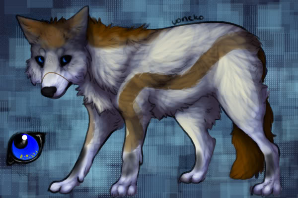 Solstice - Zan's Character WolfCharacter1