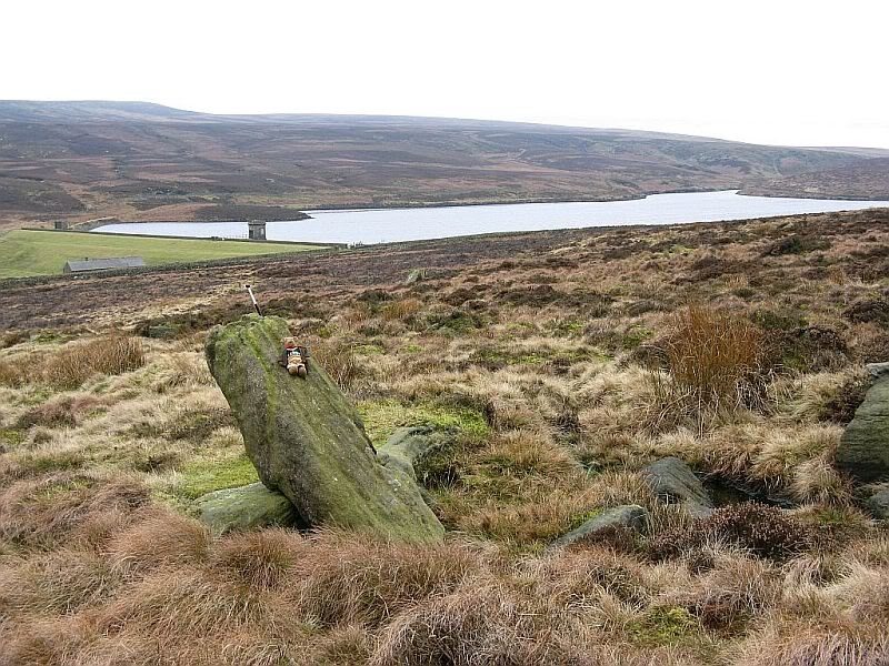 Stones around Crow Hill 03
