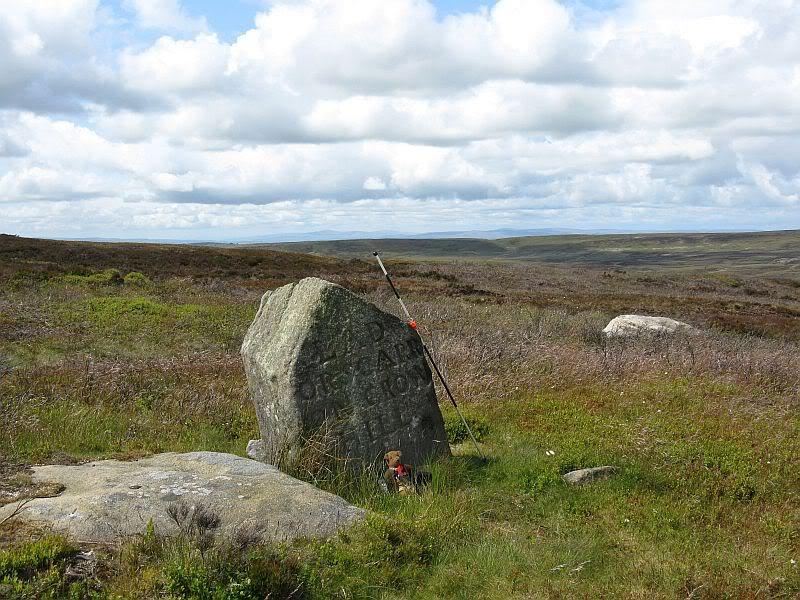 Stones around Crow Hill 04