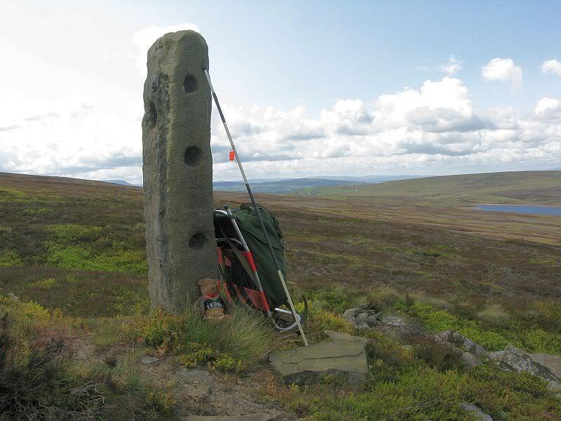 Stones around Crow Hill 13