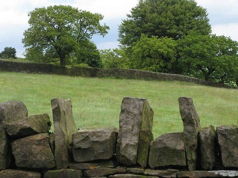 THE DISSENTERS' WELL & TOM'S CROSS, Kelbrook Moor, Lancs-Yorks Border. 12